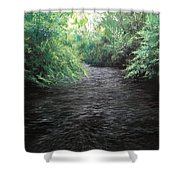 Smokey River Shower Curtain