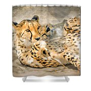 Smokin Cheetah Love Shower Curtain