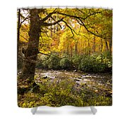 Smoky Autumn Shower Curtain
