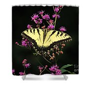 Smoky Mountain Butterfly Shower Curtain