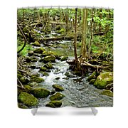 Smoky Mountain Stream 1 Shower Curtain