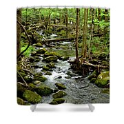 Smoky Mountain Stream 2 Shower Curtain