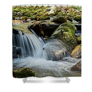 Flowing Stream #3, Smoky Mountains, Tennessee Shower Curtain