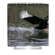 Smooth Landing Shower Curtain