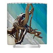 Smooth Lines Shower Curtain