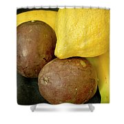 Smoothie Collection. Shower Curtain