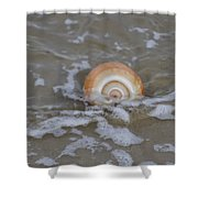 Snail In The Surf Shower Curtain