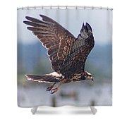 Snail Kite Shower Curtain