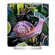 Snail On A Bush Version 2 Shower Curtain