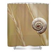 Snail On Autum Grass Blade Shower Curtain