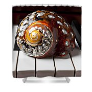 Snail Shell On Keys Shower Curtain