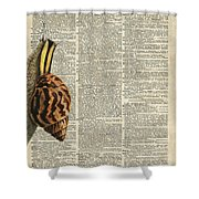 Snail Worm On Dictionary Page Shower Curtain