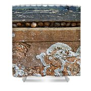 Snails At Home With Lichen Shower Curtain