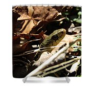 Snake In Nature Shower Curtain