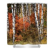 Snake River Canyon Shower Curtain