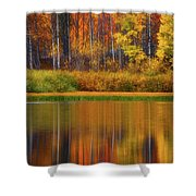 Snake River Fall Colors Shower Curtain