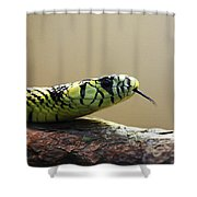 Snake Tongue Shower Curtain