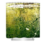Snaky Reflection Shower Curtain