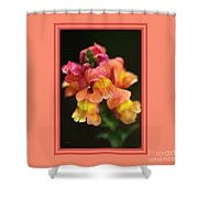 Snapdragon Flowers With Design Shower Curtain