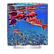 Snapper Feed Shower Curtain
