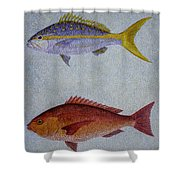 Snappers Shower Curtain