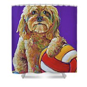 Snoopy Shower Curtain