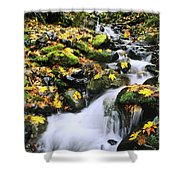 Snoqualmie National Fores Shower Curtain