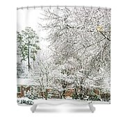 Snow 20180312 5510t Shower Curtain