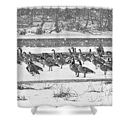 Snow And Geese On The River II Shower Curtain