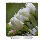 Snow Blossoms Shower Curtain