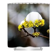Snow Capped Flower Shower Curtain