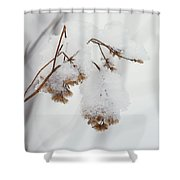 Snow Capped Shower Curtain
