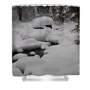 Snow Capret Shower Curtain