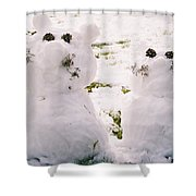 Snow Cats Shower Curtain