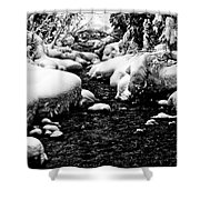 Snow Covered Banks Shower Curtain