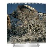 Snow-covered Black Oak Half Dome Yosemite National Park California Shower Curtain