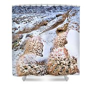 Snow Covered Cactus Below Mount Whitney Eastern Sierras Shower Curtain