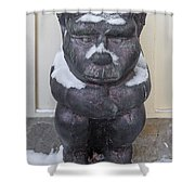 Snow Covered Chimera Shower Curtain by D K Wall