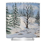 Snow Covered Shower Curtain
