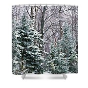 Snow-covered Forest, Wisconsin, Usa Shower Curtain