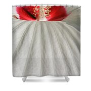 Snow Covered Hill Shower Curtain