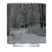 Snow Covered Path Into The Woods Shower Curtain