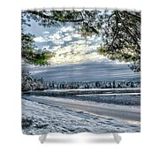 Snow Covered Pines Shower Curtain