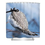 Snow-covered Pod Shower Curtain