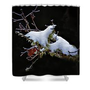 Snow Creatures Shower Curtain