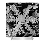 Snow Crystal Shower Curtain