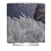 Snow Crystals Shower Curtain