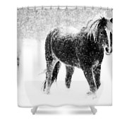 Snow Dance Shower Curtain by Mark Courage