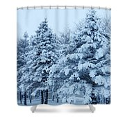 Snow Flocked Pines Shower Curtain
