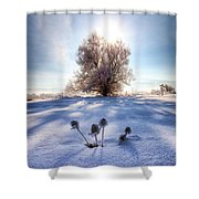 Snow Flowers Shower Curtain